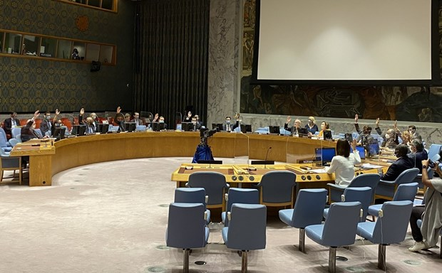 越南与联合国安理会:越南支持不扩散大规模杀伤性武器 hinh anh 1