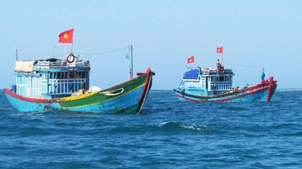 越南海洋岛屿:严惩在国外海域非法捕鱼的渔船 hinh anh 1