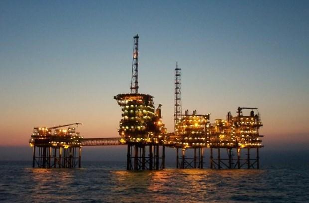 2021年上半年东海石油经营公司既定目标计划大部分超额完成 hinh anh 1