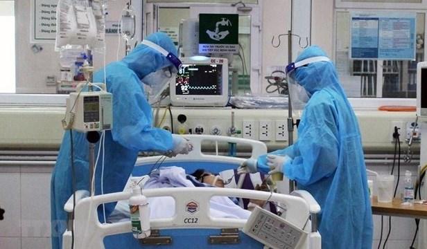 胡志明市需补充约7000名医务人员支援新冠患者治疗工作 hinh anh 2