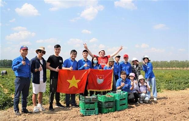 越南大学生积极参加俄罗斯莫斯科共产主义星期六义务劳动 hinh anh 1