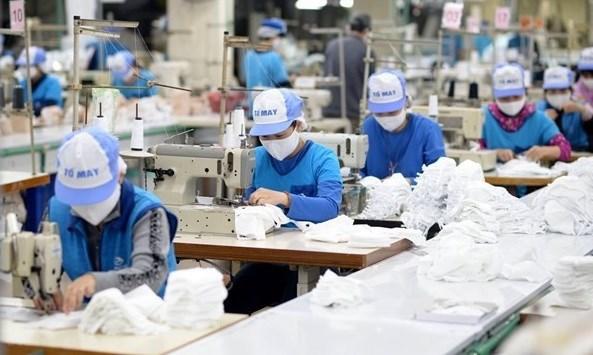 越南中小企业员工敬业度获好评 hinh anh 1