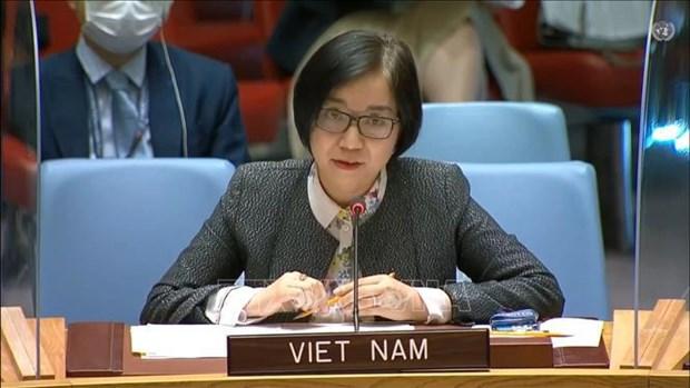 越南与联合国安理会:越南呼吁有关各方克制 对以色列-巴勒斯坦问题进行对话和谈判 hinh anh 1