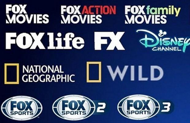 14个外国电视频道将从2021年10月1日起停止在越南提供付费电视转播服务 hinh anh 1