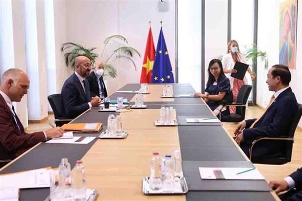 比利时和欧盟愿进一步加强与越南的关系 hinh anh 2