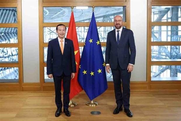 比利时和欧盟愿进一步加强与越南的关系 hinh anh 1