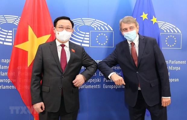 越南国会主席王廷惠与欧洲议会主席举行会谈 hinh anh 1