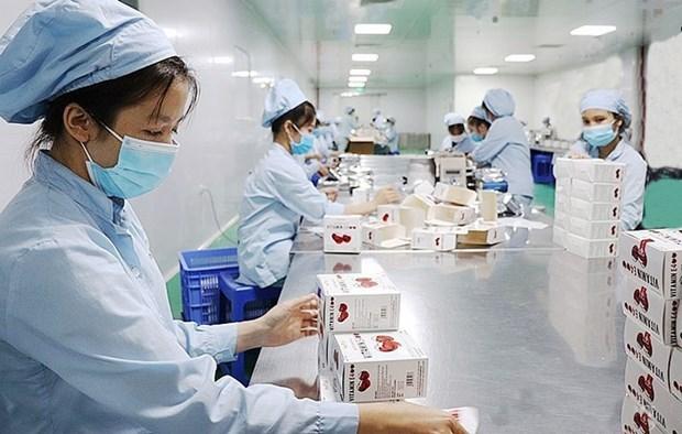 """河内""""绿区""""努力恢复生产和经营活动 hinh anh 1"""