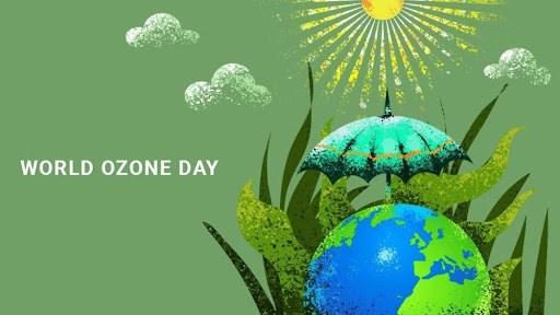 保护臭氧层国际日:越南为保护臭氧层贡献力量 hinh anh 1