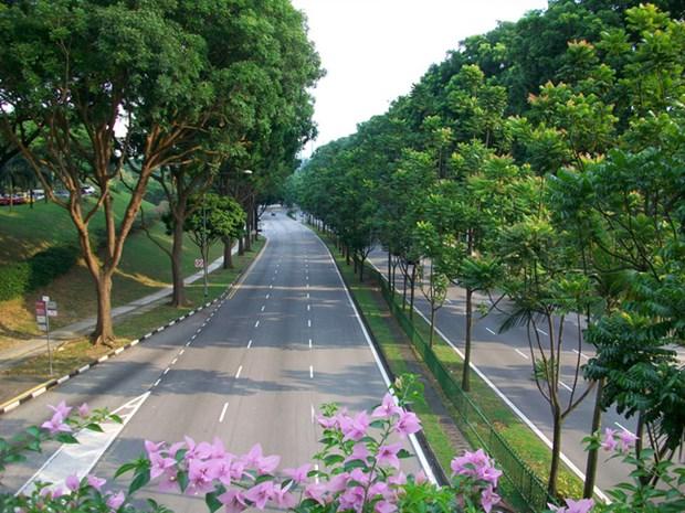 河内市集中精力开展一系列保护环境的措施 hinh anh 1