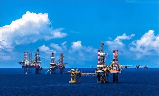 越南国家油气集团连续第10年跻身越南最大企业前三位 hinh anh 1