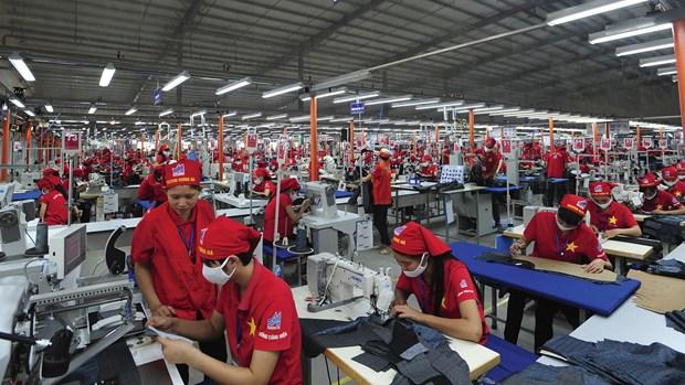 RCEP生效后越南纺织企业迎来发展新机遇 hinh anh 1