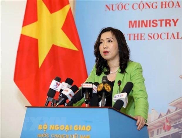 越南外交部发言人黎氏秋姮:保障越南船员的安全和权益 hinh anh 1