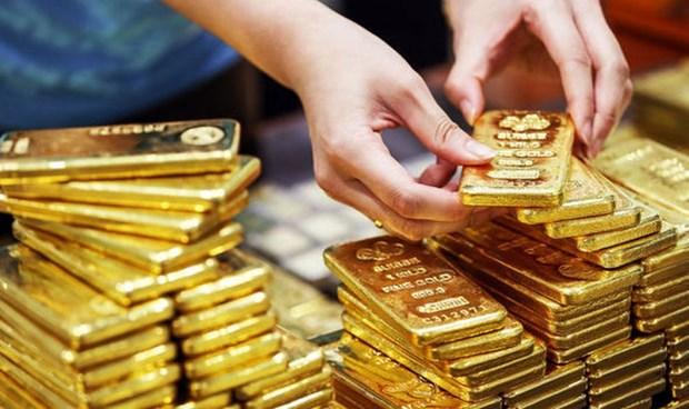 今日上午越南国内市场黄金价格每两超过5700万越盾 hinh anh 1