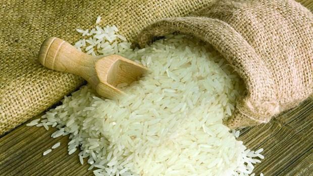 越南为何进口大米? hinh anh 1