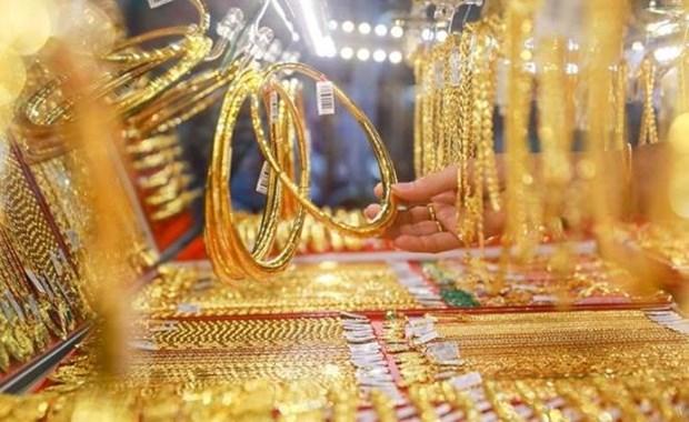 11日上午越南国内市场黄金价格每两跌破5600万越盾 hinh anh 1