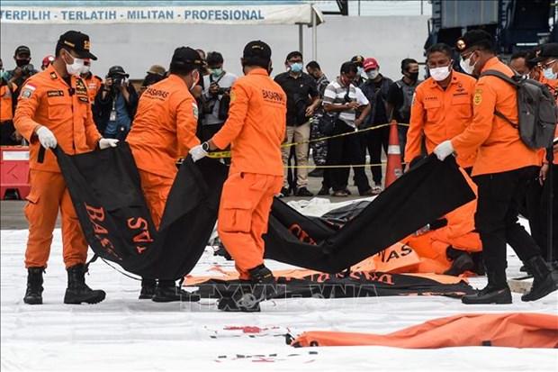 印尼飞机坠毁事件:IFG愿为遇难者家属提供赔偿 hinh anh 1