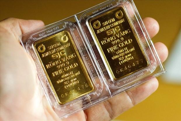 19日上午越南国内市场黄金价格每两上涨56万越盾 hinh anh 1