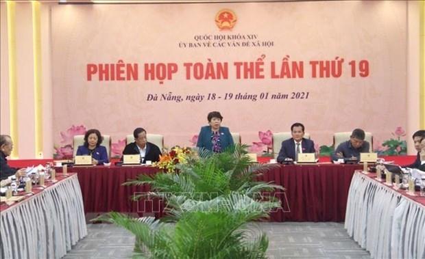 越南国会社会事务委员会第19次全体会议开幕 hinh anh 1
