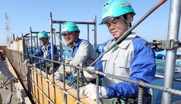 2021年越南外派劳务人员数量约达9万人 hinh anh 1