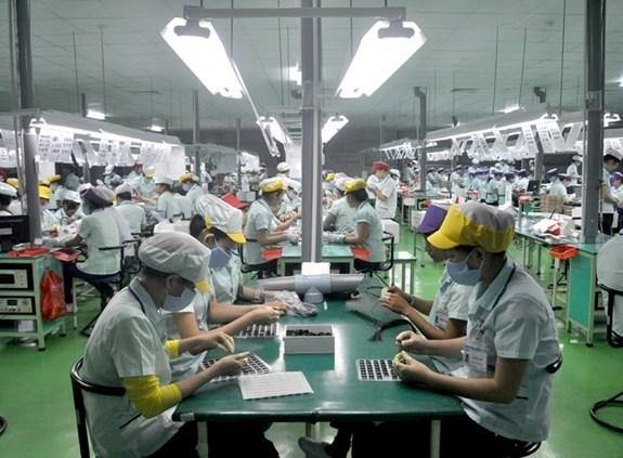 2020年越南对中国出口额达489亿美元 hinh anh 1
