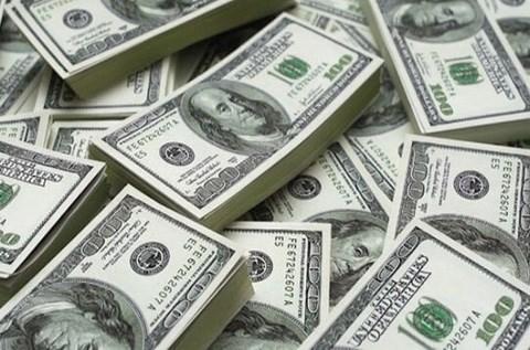 19日上午越盾对美元汇率中间价下调11越盾 hinh anh 1