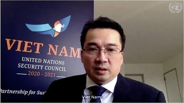 越南呼吁联合国安理会在应对新冠肺炎疫情中充分发挥引领作用 hinh anh 2