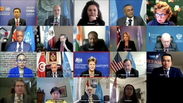 联合国安理会通过关于西非和萨赫勒局势的主席声明 hinh anh 2