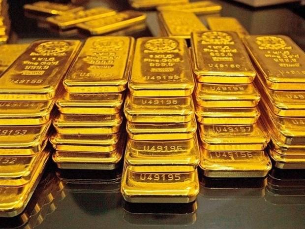 17日上午越南国内市场黄金价格每两下调35万越盾 hinh anh 1