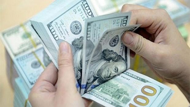 今日越盾对美元汇率中间价保持稳定 hinh anh 1