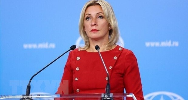 俄罗斯高度重视新背景下俄越战略伙伴关系 hinh anh 1