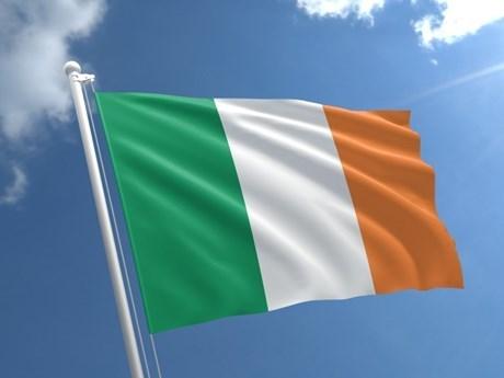 越南领导人致电祝贺爱尔兰国庆日 hinh anh 1