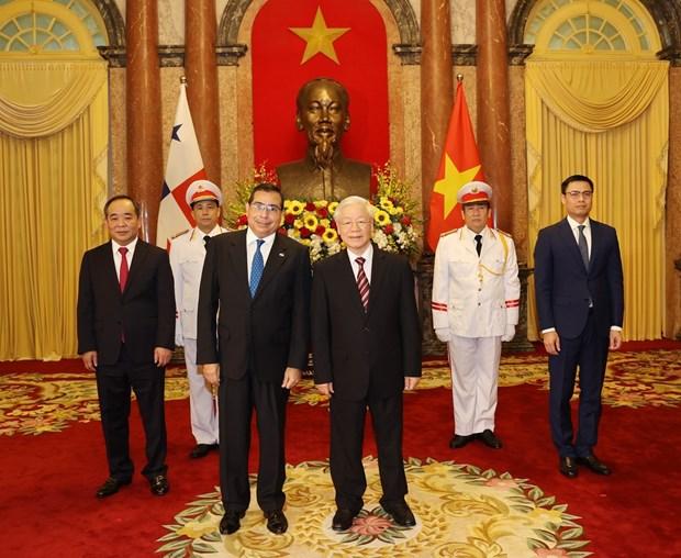 越共中央总书记、国家主席阮富仲接受3国新任驻越大使递交的国书 hinh anh 1