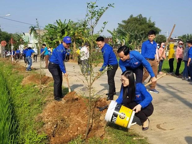 广治省共青团与青年团员携手并肩推动经济社会发展 hinh anh 1
