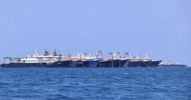 越南外交部例行记者会:越南要求中国停止侵犯东海主权的行为 hinh anh 1
