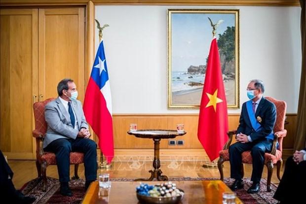 越南与智利友谊日益密切 hinh anh 1