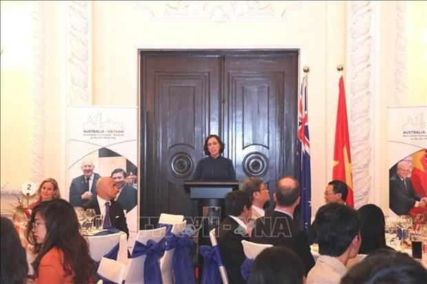 越南-澳大利亚建交48周年庆典在胡志明市隆重举行 hinh anh 2