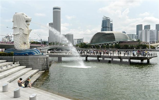 新加坡捐助2000万多美元 帮助低收入国家应对新冠疫情 hinh anh 1