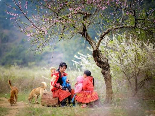 来西北地区体验浪漫自然景色 hinh anh 1