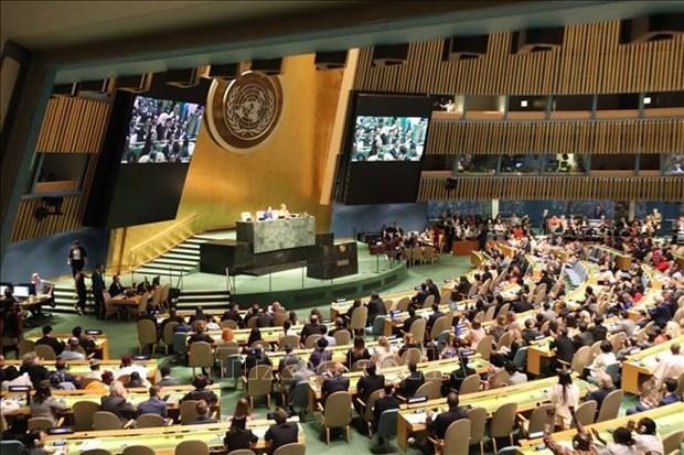 越南与联合国安理会:凸显越南在国际舞台上的烙印 hinh anh 2