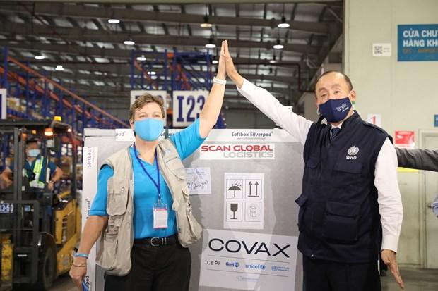 由COVAX提供的81.1万剂新冠疫苗已运抵越南河内 hinh anh 1