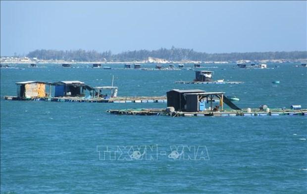 促进海洋资源有效开发利用和可持续发展 hinh anh 1