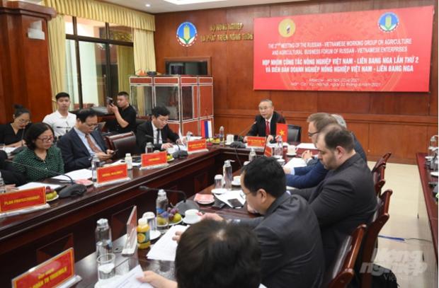 充分利用优势促进越南与俄罗斯农产品贸易 hinh anh 1