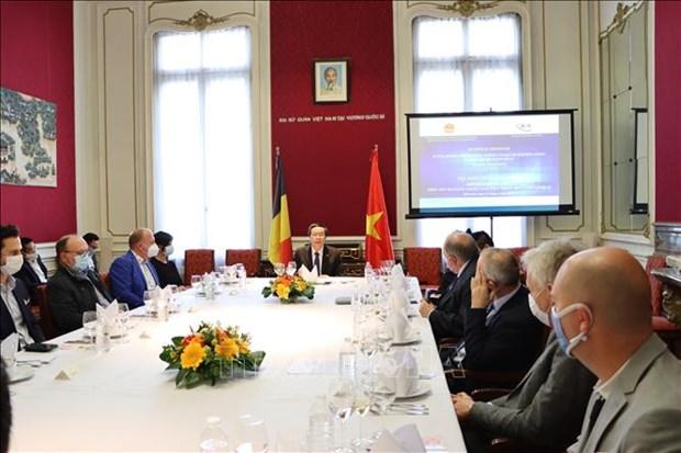 越南成为吸引比利时企业的目的地 hinh anh 1