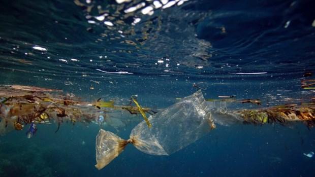 日本协助越南进行海洋科研和处理塑料废料 hinh anh 1