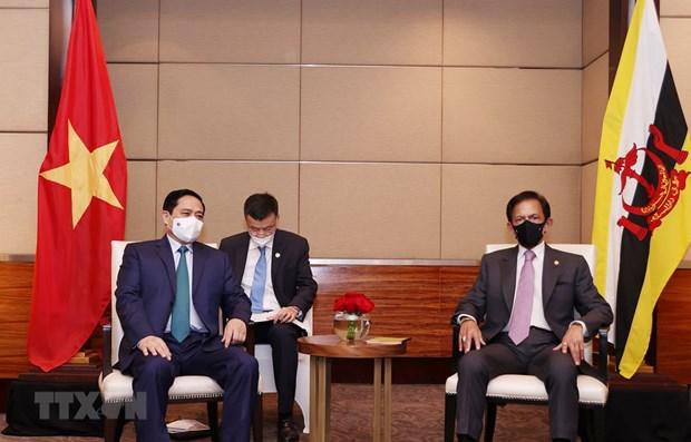 越南政府总理范明政会见文莱苏丹哈桑纳尔 hinh anh 1
