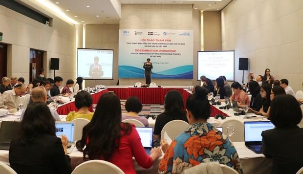 促进将性别纳入越南应对气候变化政策之中 hinh anh 1