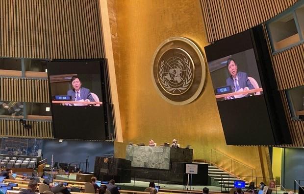 越南出色履行联合国安理会轮值主席国职责 hinh anh 1