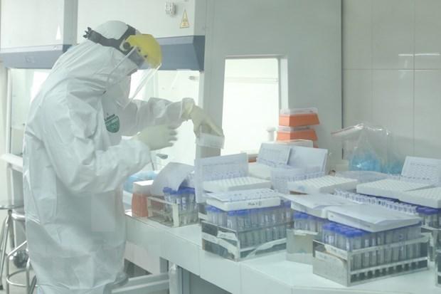 新冠肺炎疫情:卫生部要求对各集群感染病例的样本进行基因测序 hinh anh 1