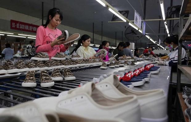 比利时将EVFTA视为加强与越南合作的机会 hinh anh 1